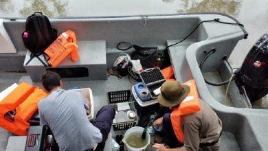 Photo of Mejora la situación por las aguas verdes en el Delta