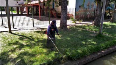 Photo of Limpieza y mantenimiento en escuelas de Islas