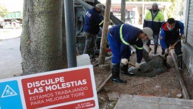 Photo of Construyen nuevas veredas en Ricardo Rojas