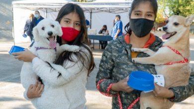 Photo of El móvil de zoonosis recorre los barrios