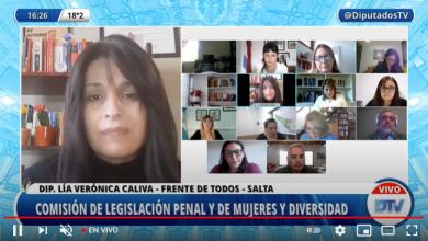 Photo of Diputados debate la incorporación de la perspectiva de género en la figura de legítima defensa