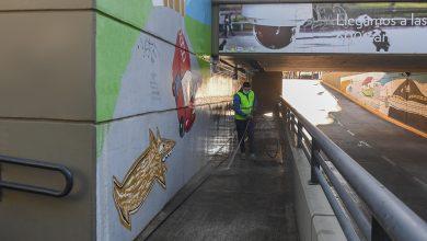 Photo of Trabajos de mantenimiento en el túnel de Ruta 202